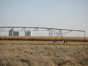 Irrigation in SW Kansas