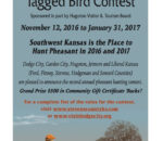 Five Counties in Southwest Kansas Announce Rooster Roundup Pheasant Hunting Contest